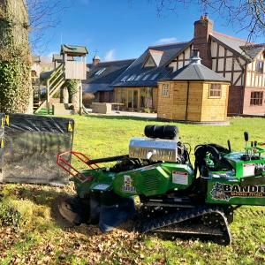 Stump Grinding and Stump Removal Service